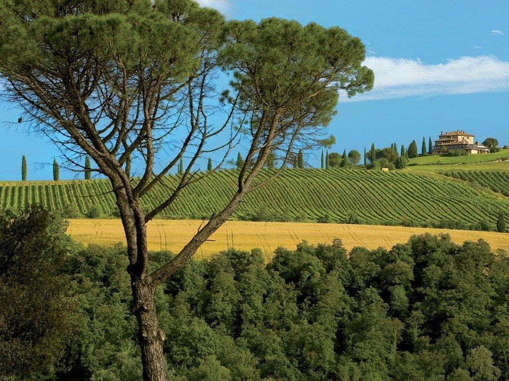 home panoramica Relais Todini